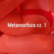 Metamorfoza cz. 1